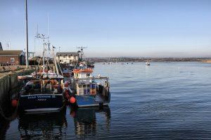 Fishing Boats Northumberland Amble Uk Harbour